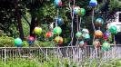 Schützenfest Arnsberg 2013_113