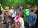 Wildwald Vosswinkel 2011_20